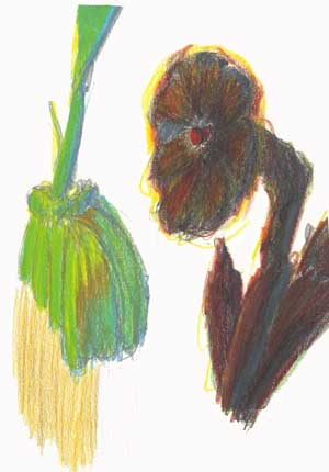 Flower/ plant