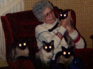 Shirley Haynes and the 4 cats