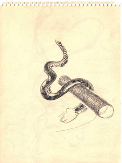 Snake pipe