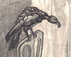 Violin vulture